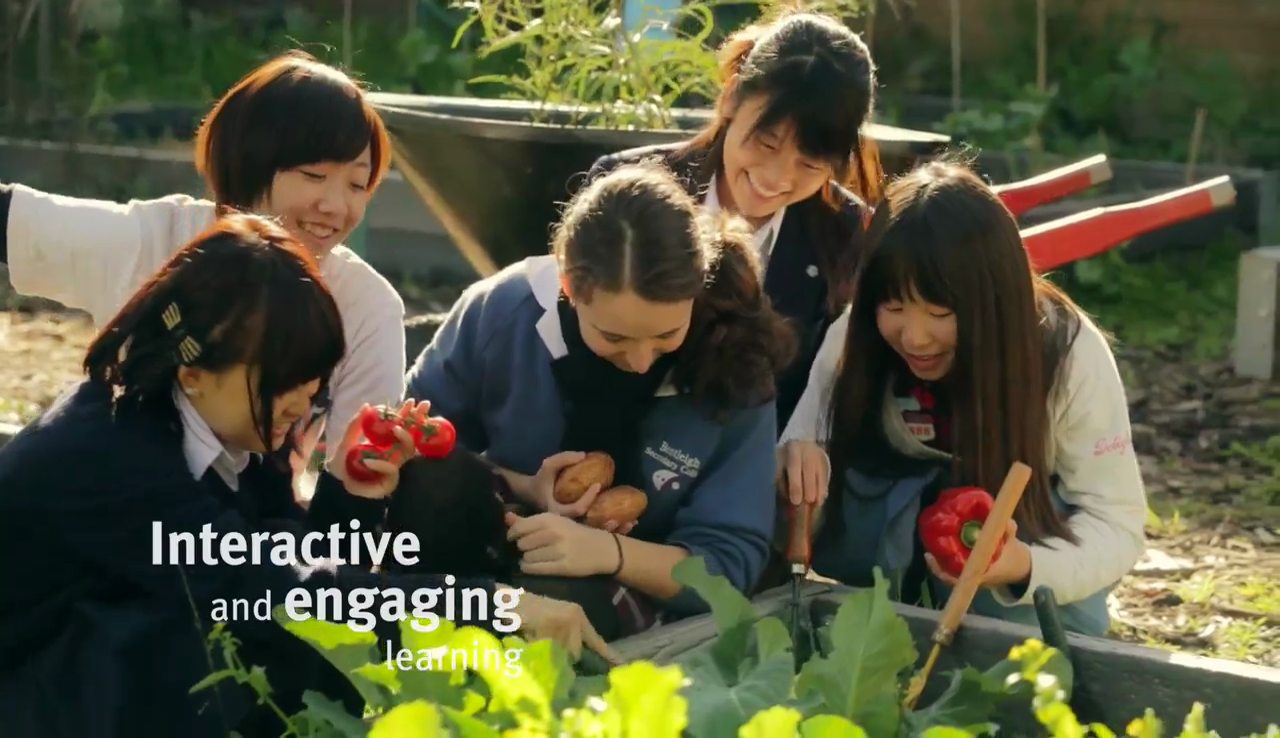 video screenshot of international students picking tomatoes in the garden